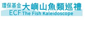 環保基金 大嶼山魚類巡禮 河溪生態探索